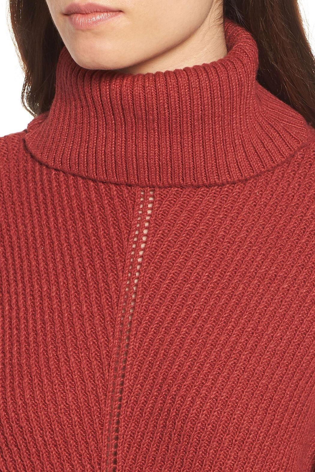 Cupcakes & Cashmere Pullover Turtleneck Sweater - Front Full Image