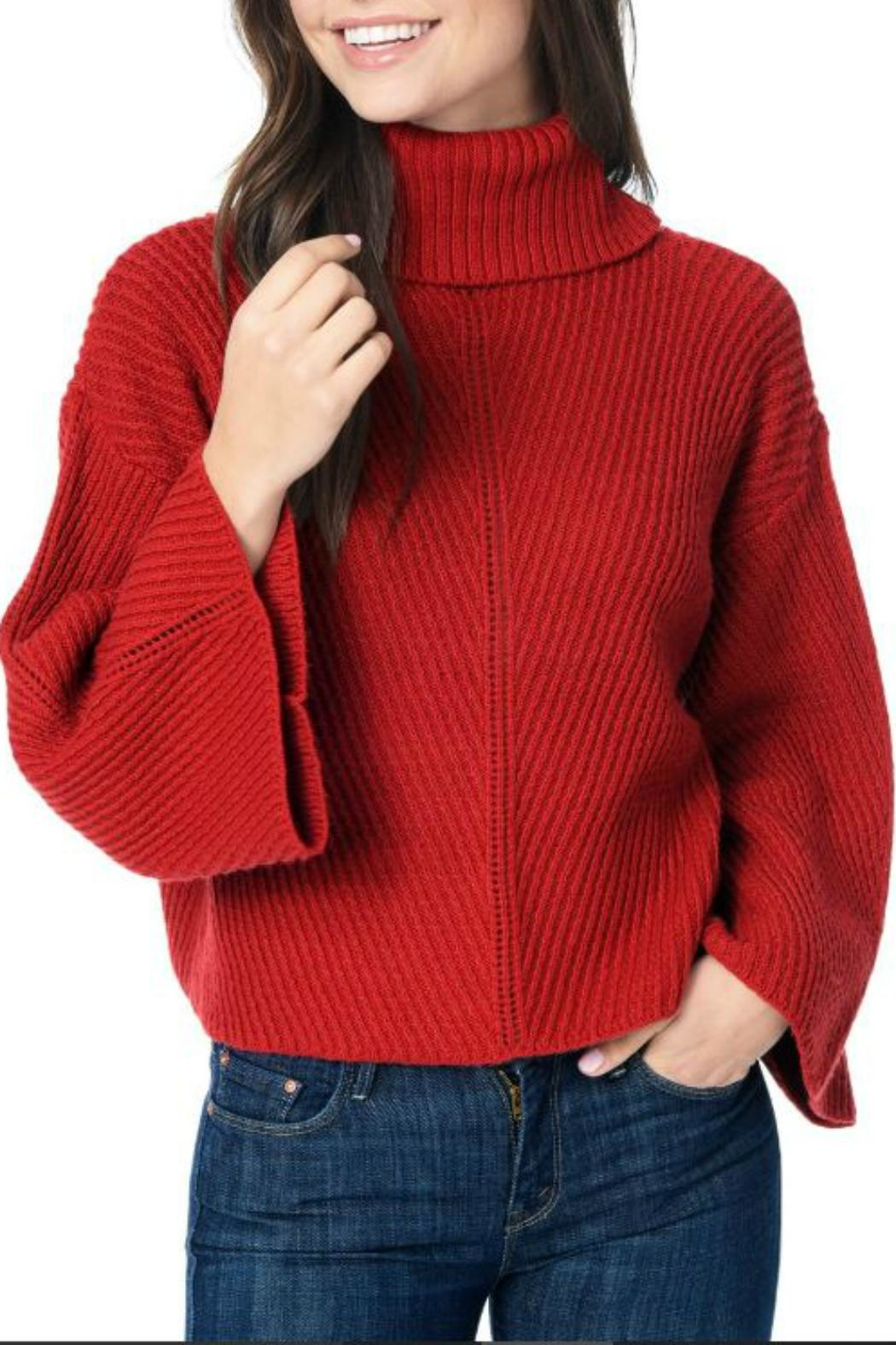 Cupcakes & Cashmere Pullover Turtleneck Sweater - Main Image