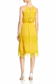 Cupcakes & Cashmere Tamica Dress - Front full body