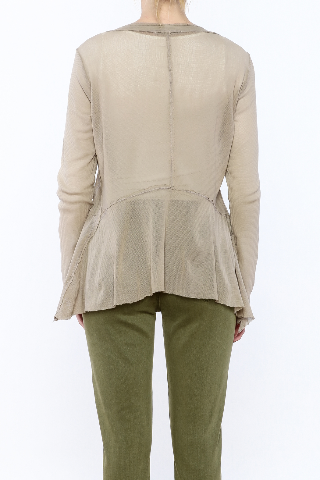 Cut Loose Sheer Beige Jacket - Back Cropped Image