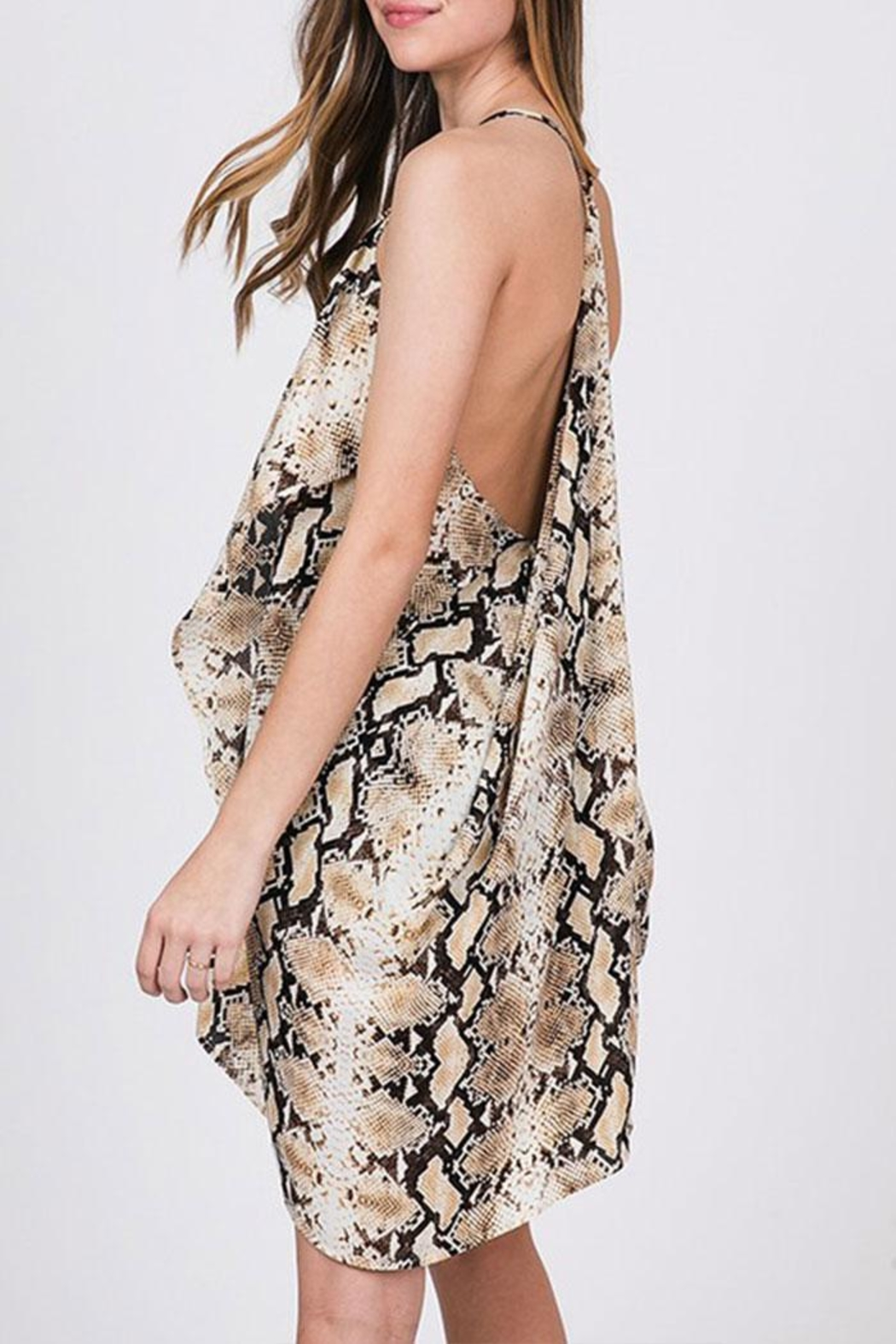 CY Fashion Snake Print Dress - Front Full Image