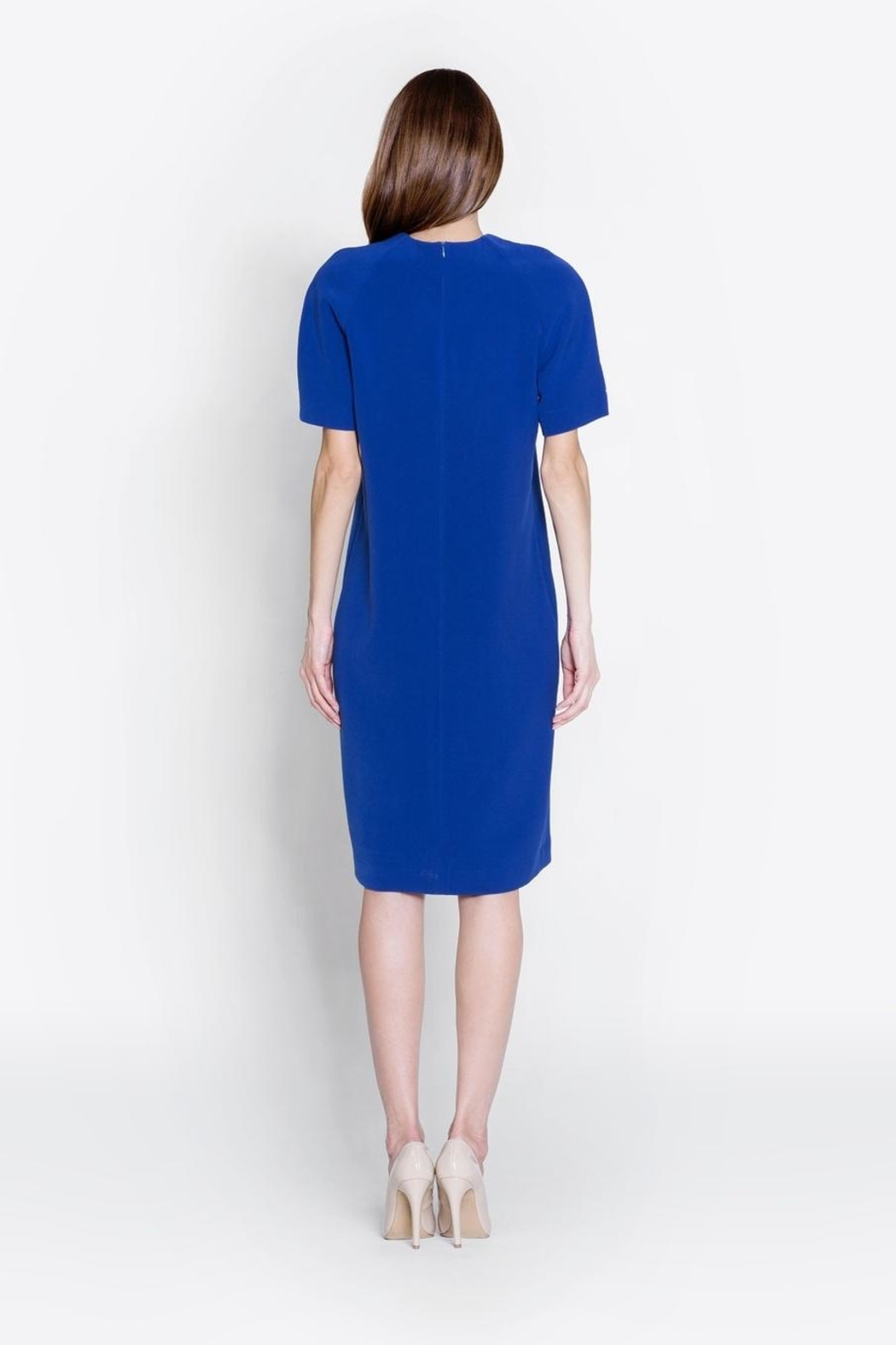 CYRILLE GASSILINE Short Sleeve Dress - Side Cropped Image
