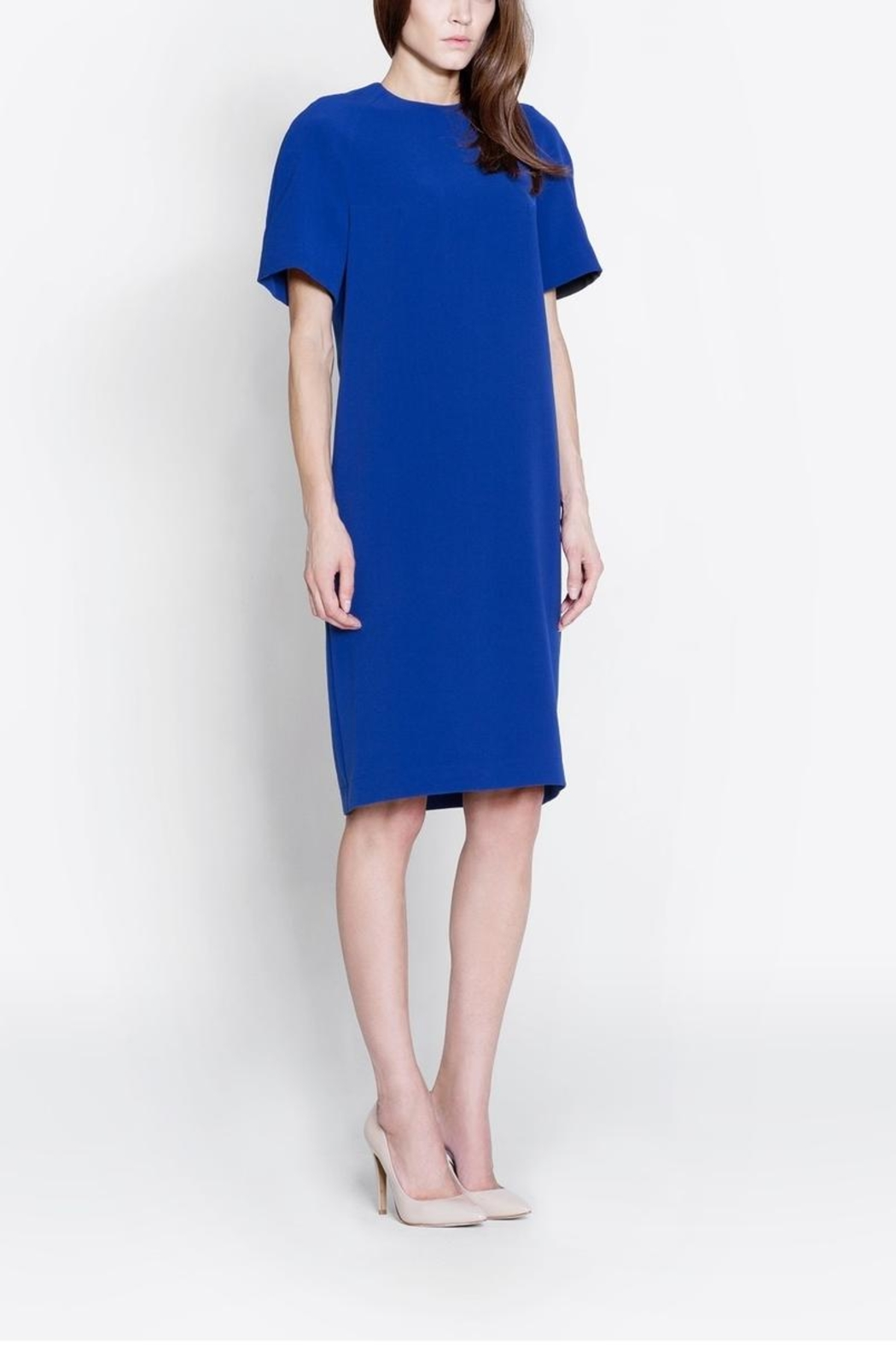 CYRILLE GASSILINE Short Sleeve Dress - Front Full Image