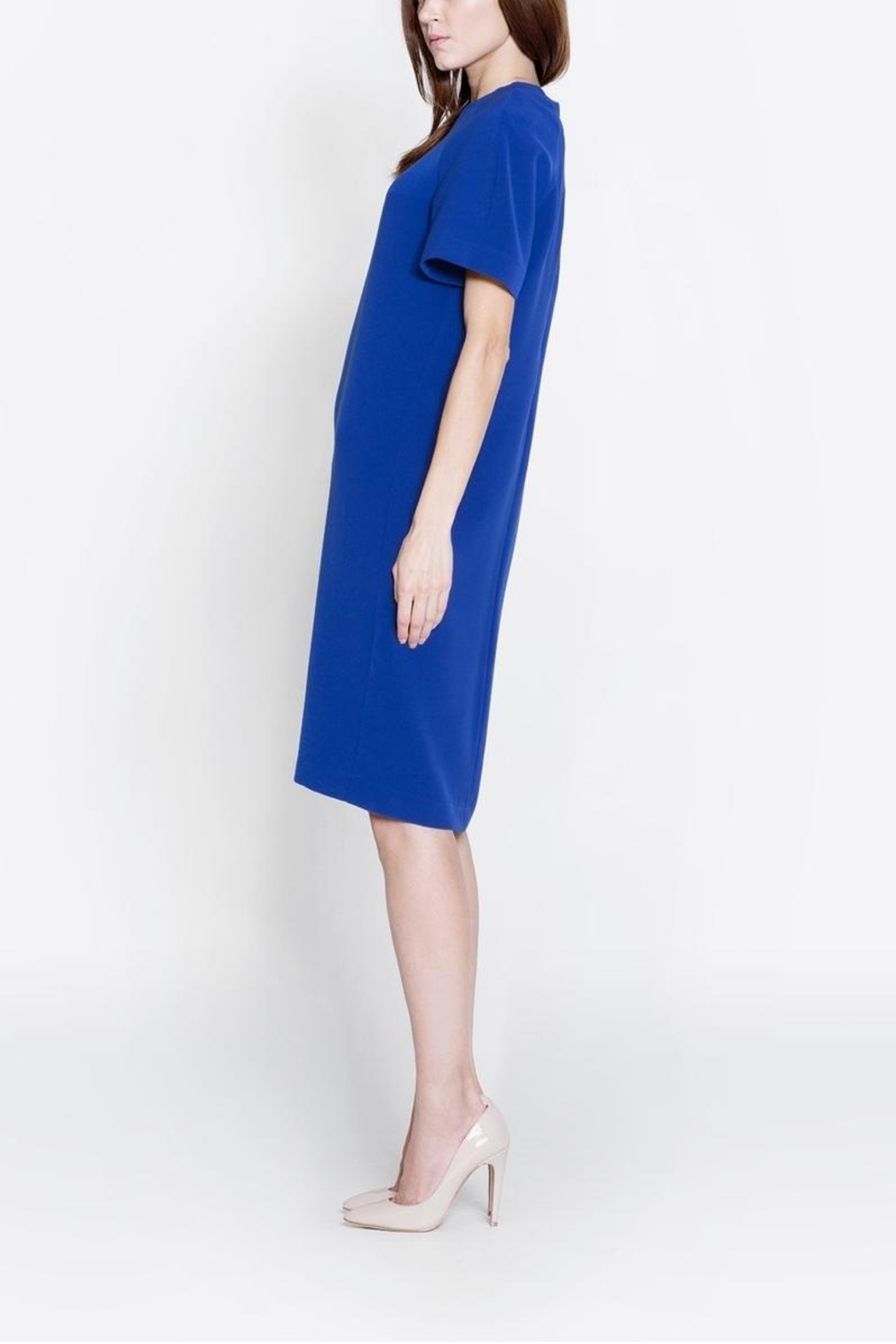 CYRILLE GASSILINE Short Sleeve Dress - Back Cropped Image