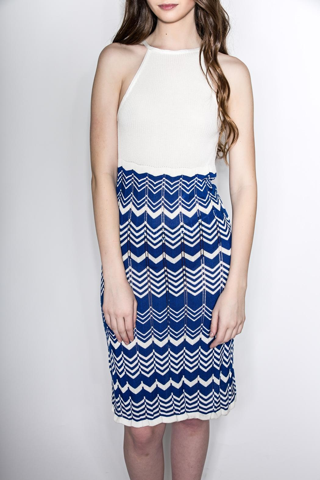 Dolce Vita Highneck Fitted Dress - Main Image