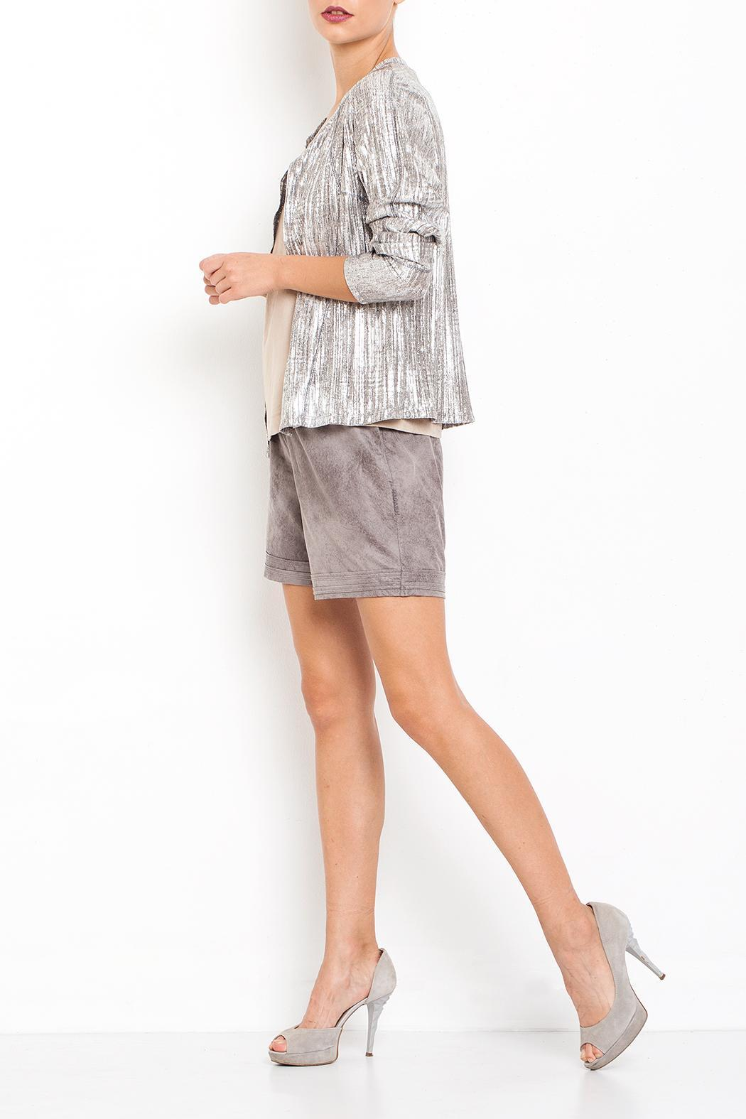Dagani Studio Pleated Silver Top - Front Full Image
