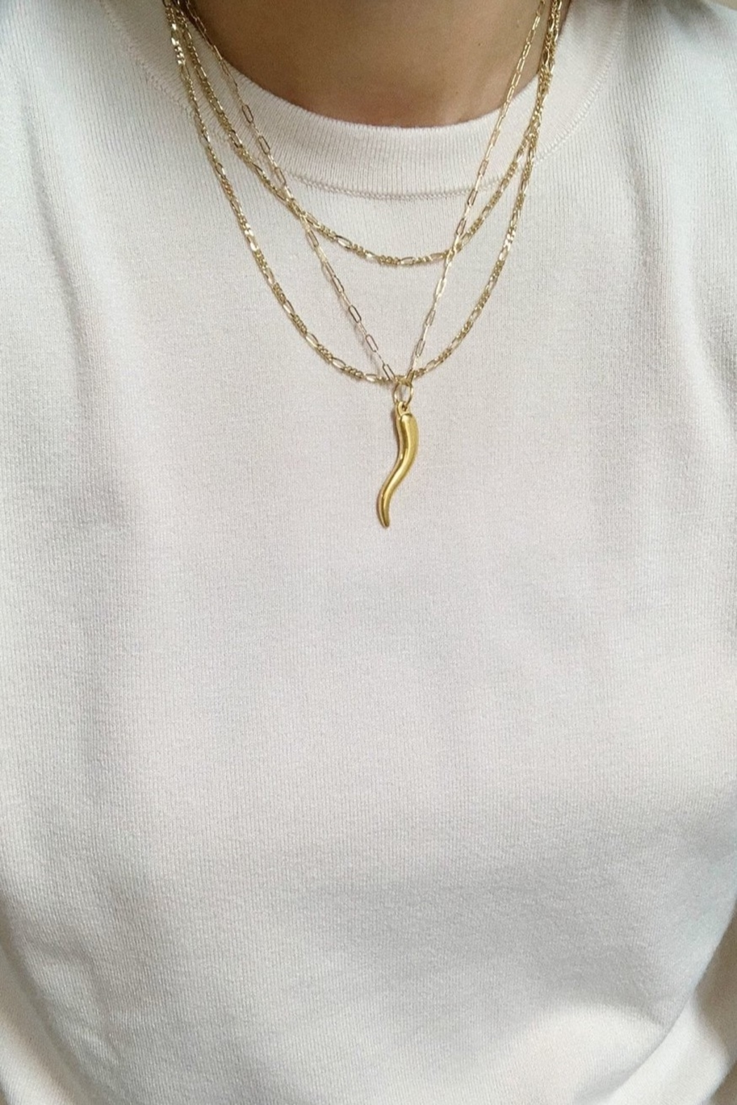 CRIV Dainty Italian Horn Necklace - Front Full Image