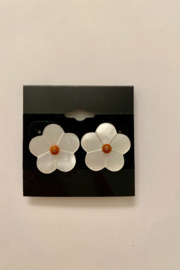 tesoro  Daisy Shell Studs - Product Mini Image