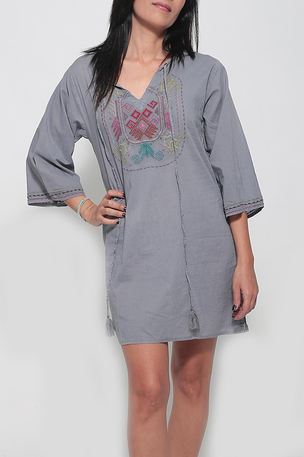 Dana Ashkenazi Short Fable  Grey Dress - Main Image