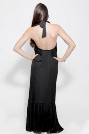 Dana Ashkenazi Tulle Dress - Back cropped