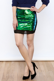 Dance & Marvel Sequined Skirt - Front cropped