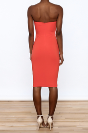 Dance & Marvel Coral Bodycon Dress - Back cropped