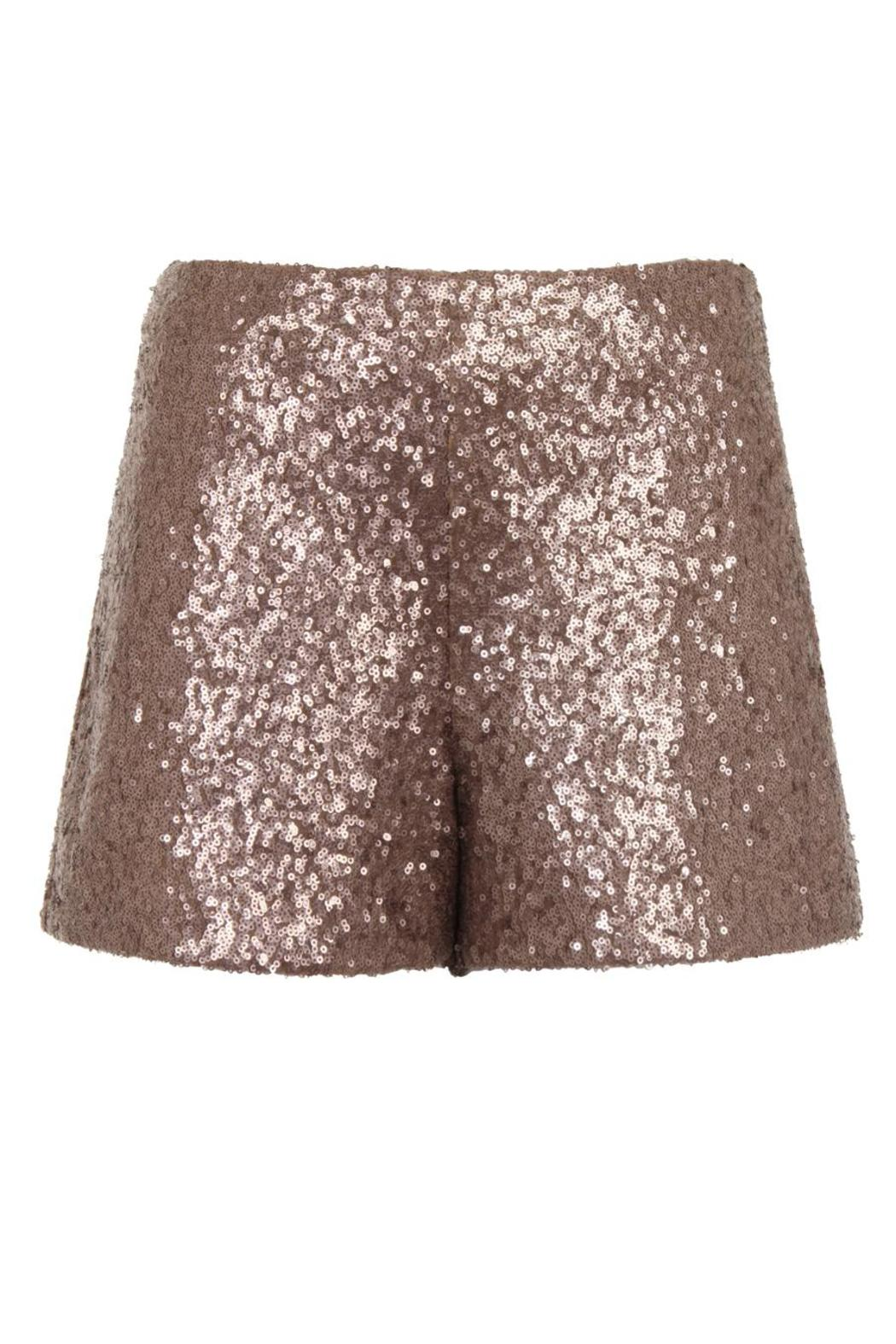 Darling Octavia Shorts - Front Cropped Image