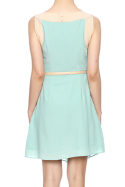 Darling Sleeveless Pleated Dress - Back cropped