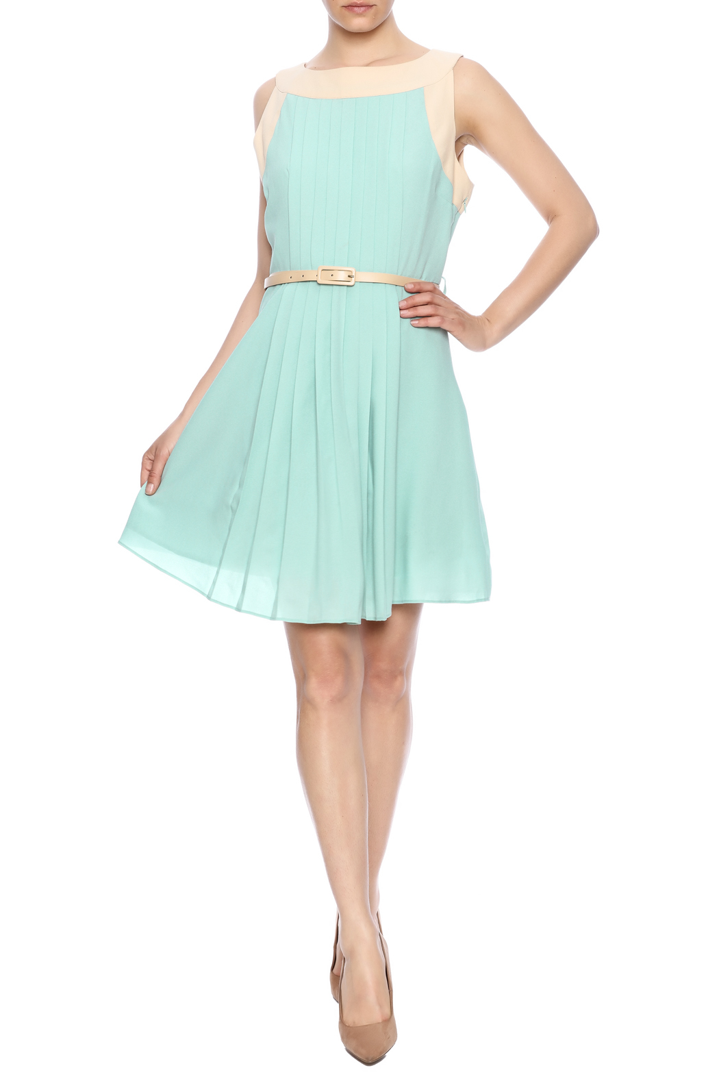 Darling Sleeveless Pleated Dress - Front Full Image