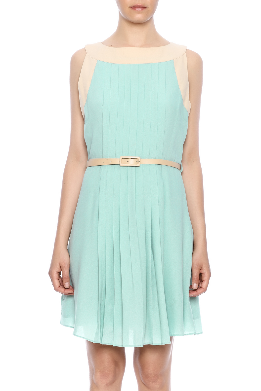 Darling Sleeveless Pleated Dress - Side Cropped Image