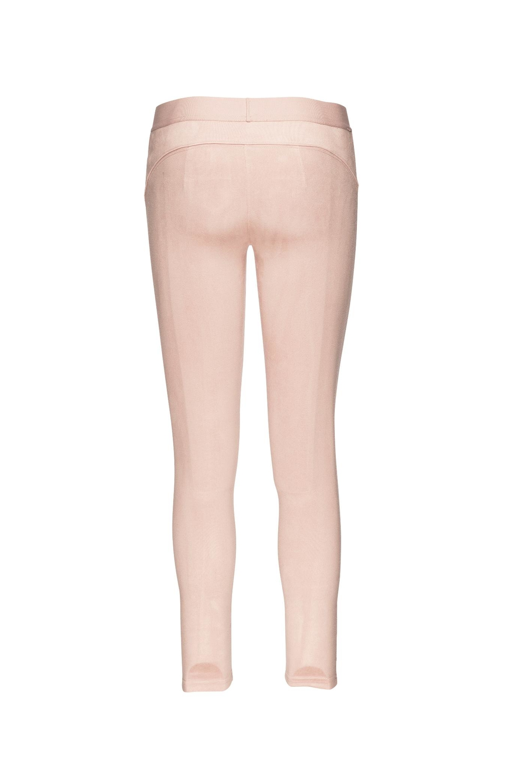 David Lerner New York Micro Suede Opal Jeggings - Front Full Image