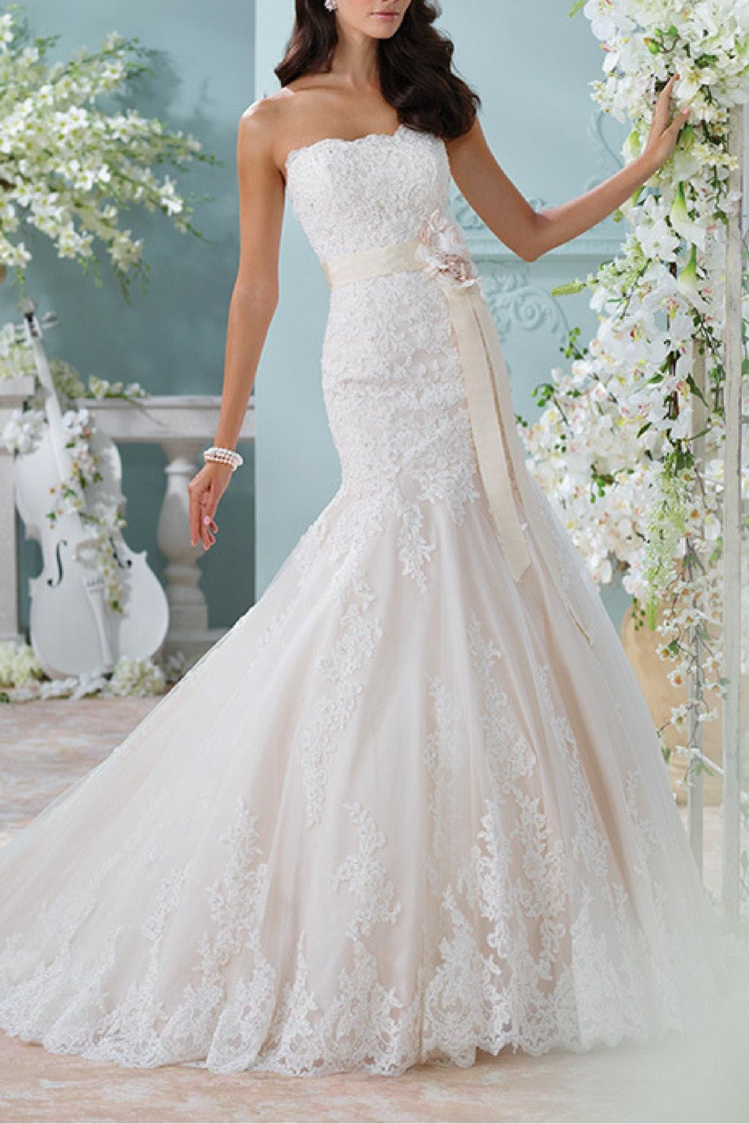 David Tutera for Mon Cheri Strapless Lace Bridal Dress - Main Image