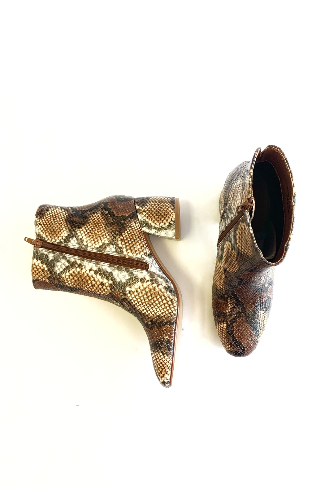 Chinese Laundry Davinna Snake bootie - Front Full Image