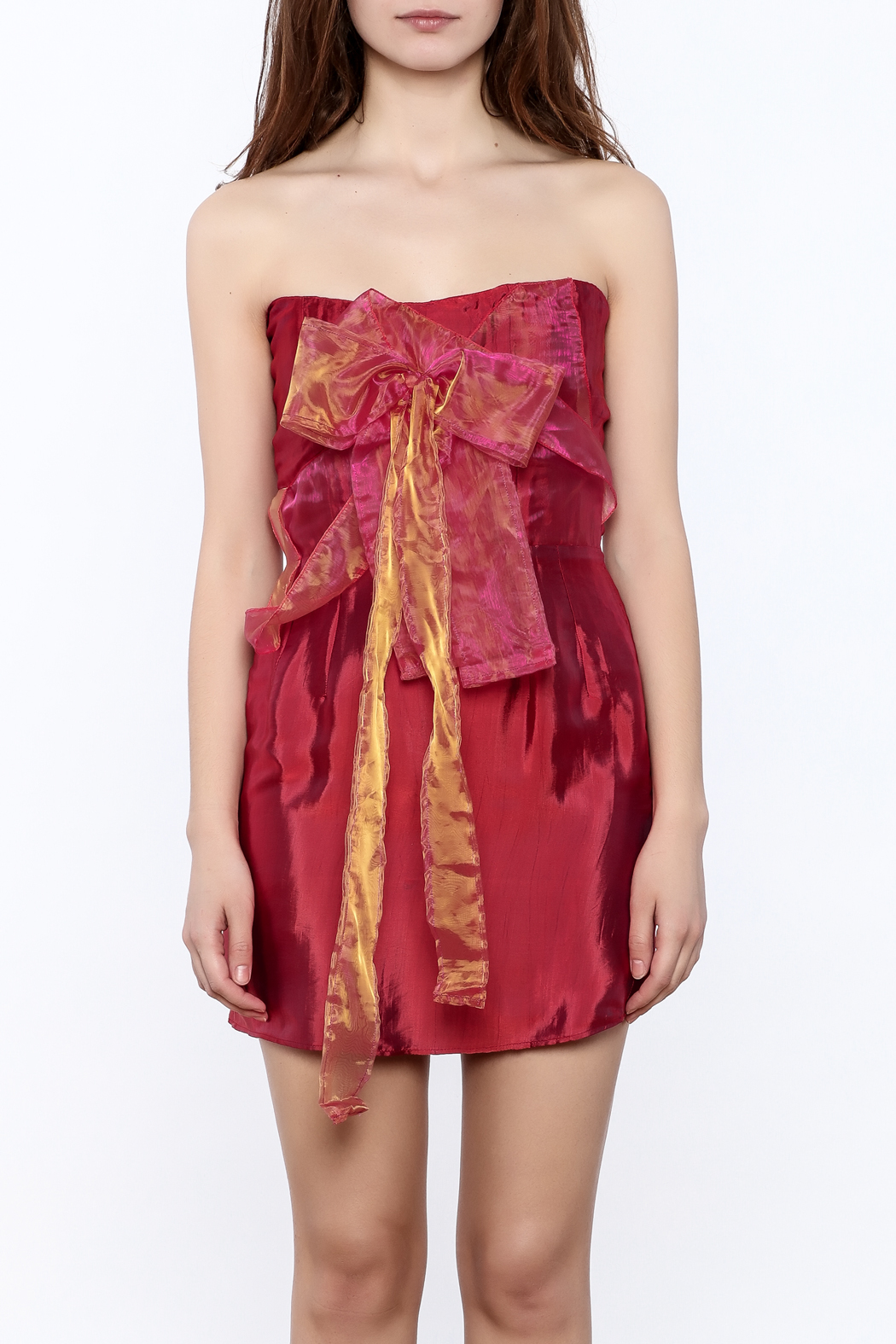Dawn Sunflower Red Tube Dress - Side Cropped Image