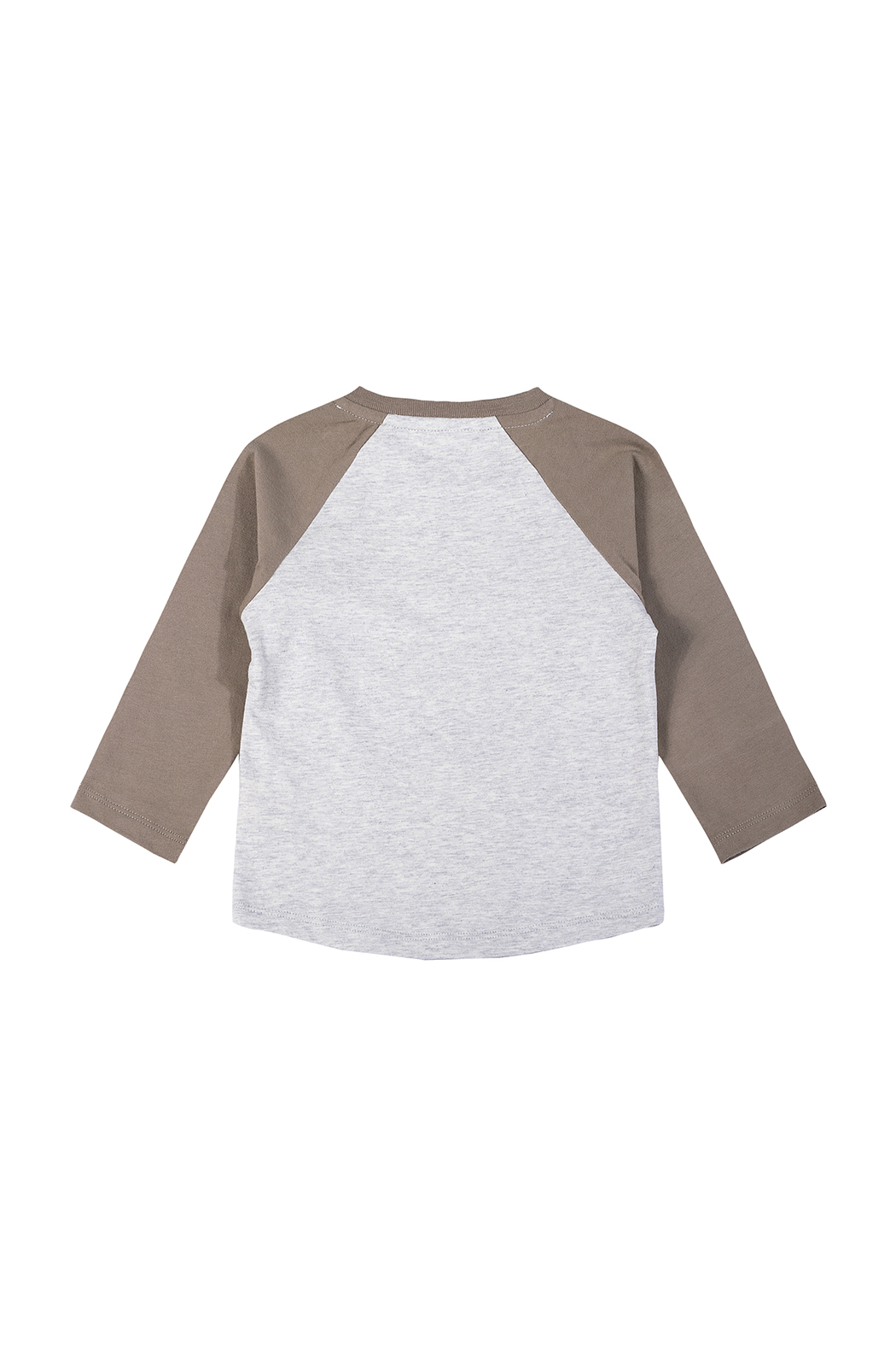 Paper Wings Day Trippers Organic Raglan Tee - Front Full Image