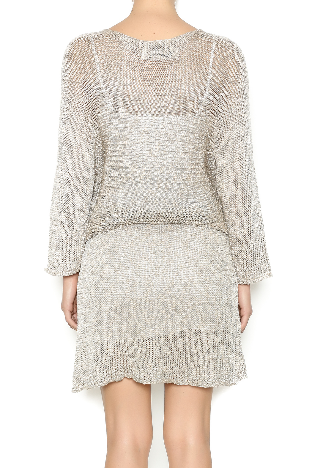 DC KNITS Champagne Sheen Dress - Back Cropped Image