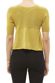 DC KNITS Lime 3/4 Sleeve Sweater - Back cropped