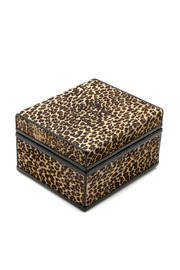 Passports Faux Leopard Box - Front cropped