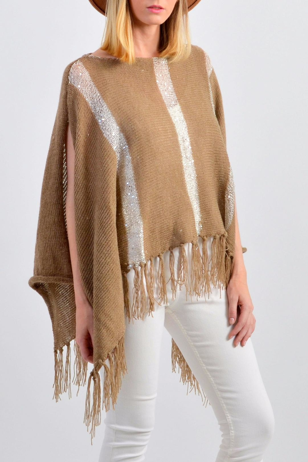 De Mil Amores Buenos Aires Pampa Poncho - Back Cropped Image