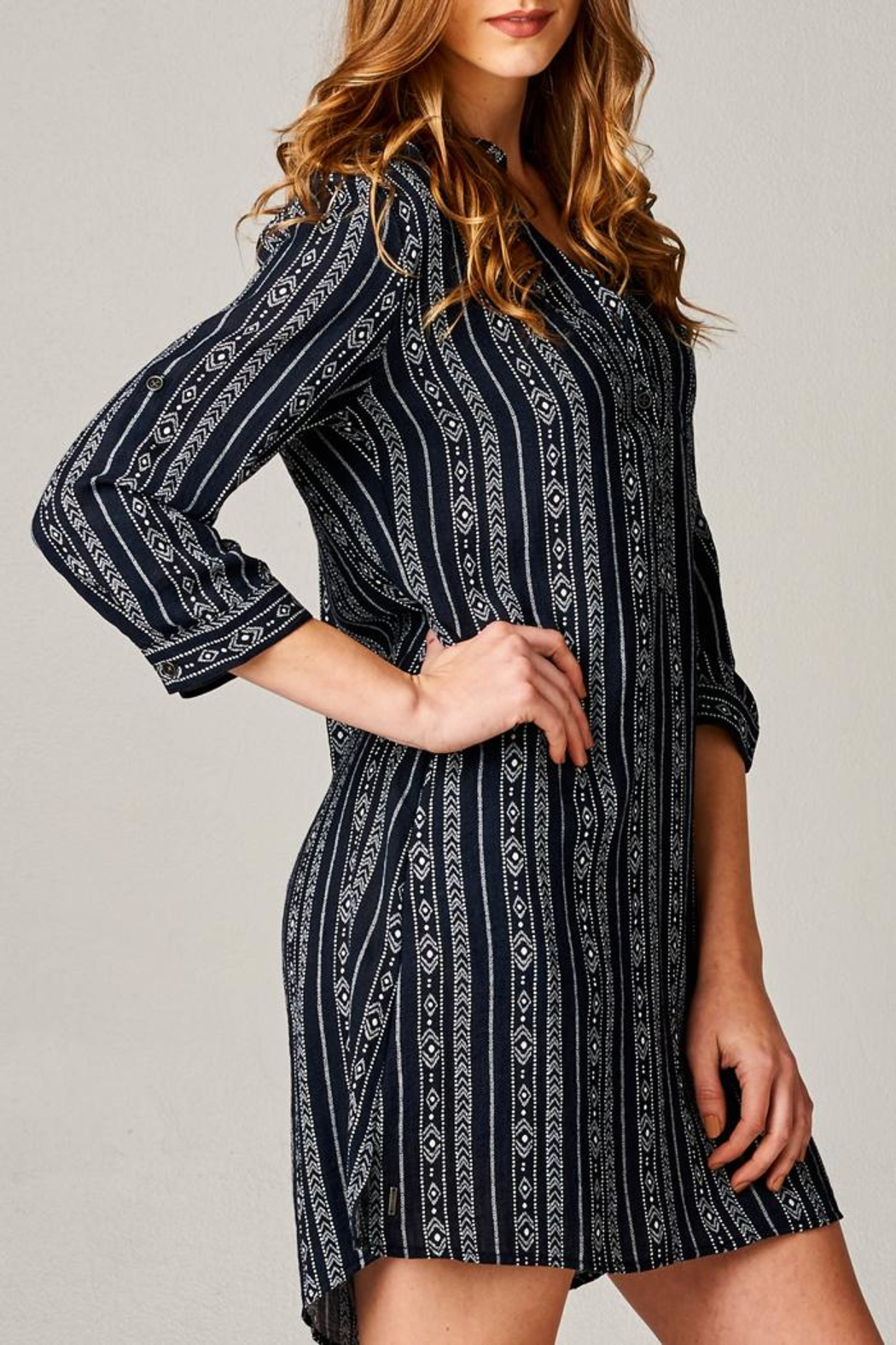 Dear John Embroidered Shirt Dress - Side Cropped Image