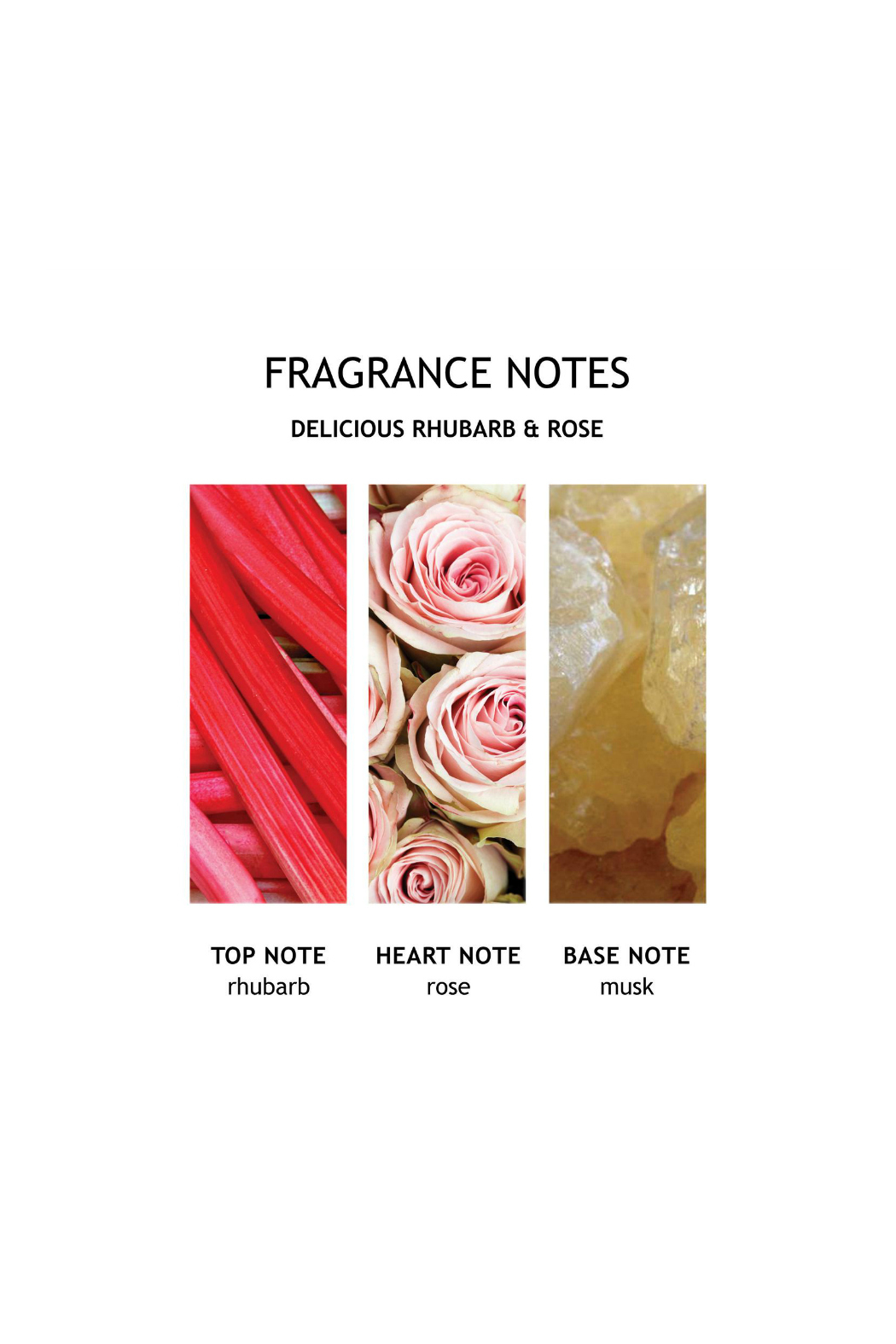 Molton Brown Delicious Rhubarb & Rose Hand Lotion - Front Full Image