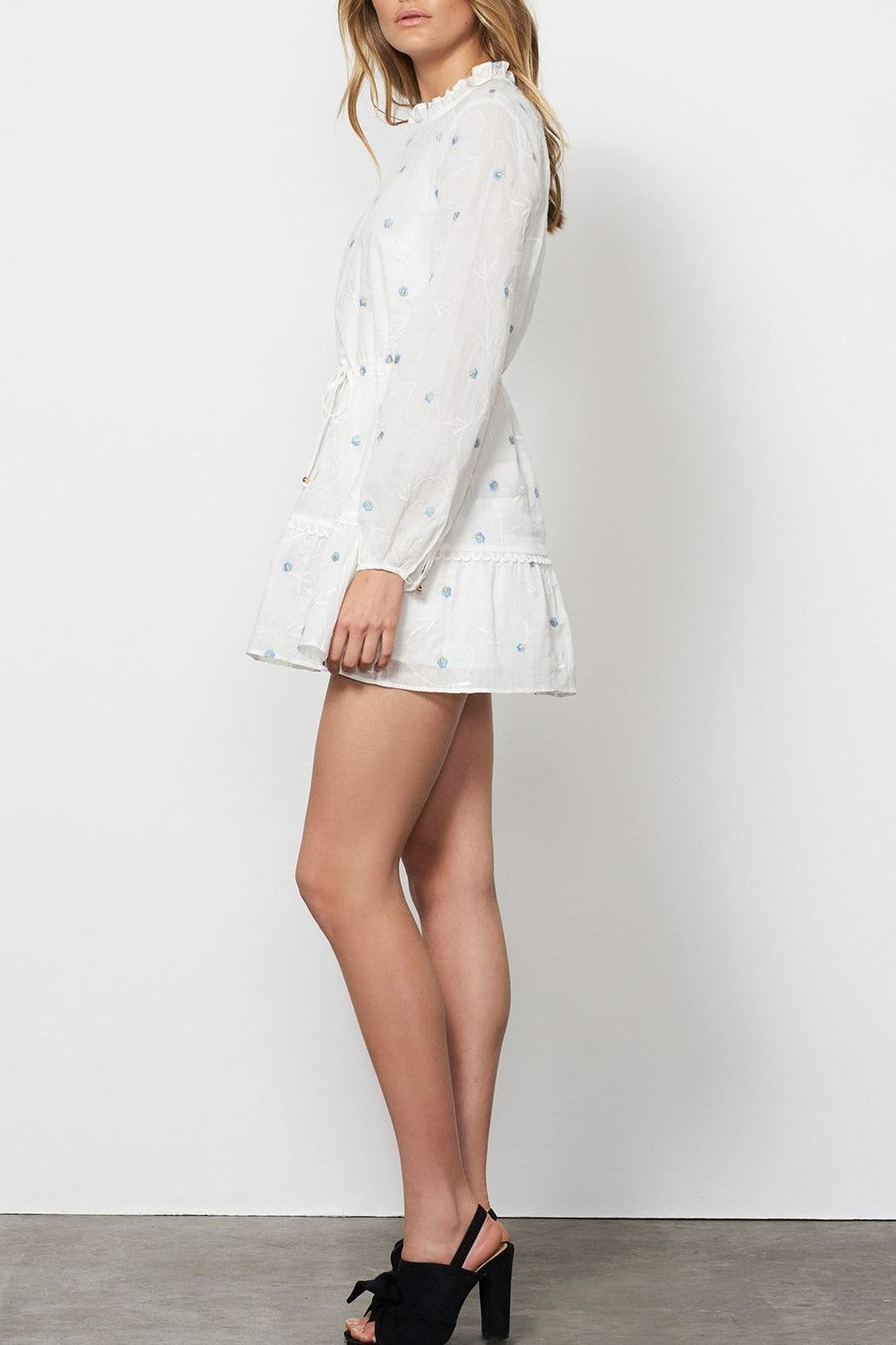 Stevie May Delirium Mini Dress - Side Cropped Image