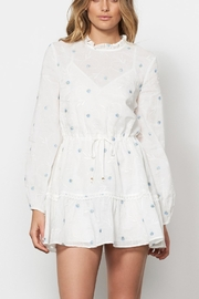 Stevie May Delirium Mini Dress - Front cropped