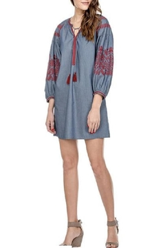 Joy Joy Denim Embroidered Dress - Alternate List Image