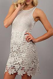 Design Recipe Champagne Lace Dress - Front cropped