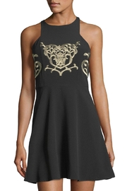 Devlin Embroidered Bodice Dress - Product Mini Image