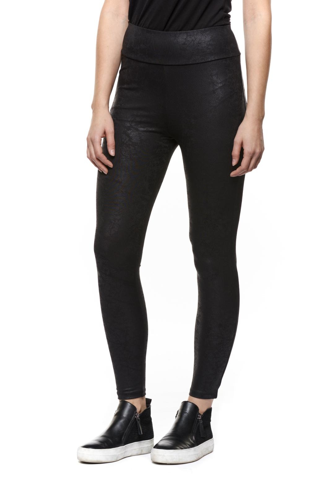 Dex Coated Faux-Leather Legging - Front Cropped Image