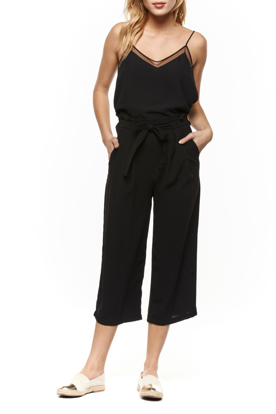 Dex Black Cropped Palazzo Pants - Front Cropped Image