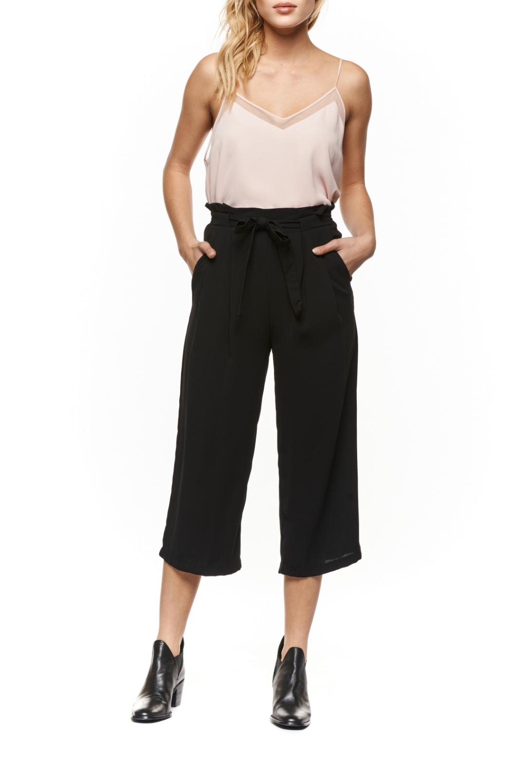 Dex Cropped Palazzo Pant - Front Cropped Image