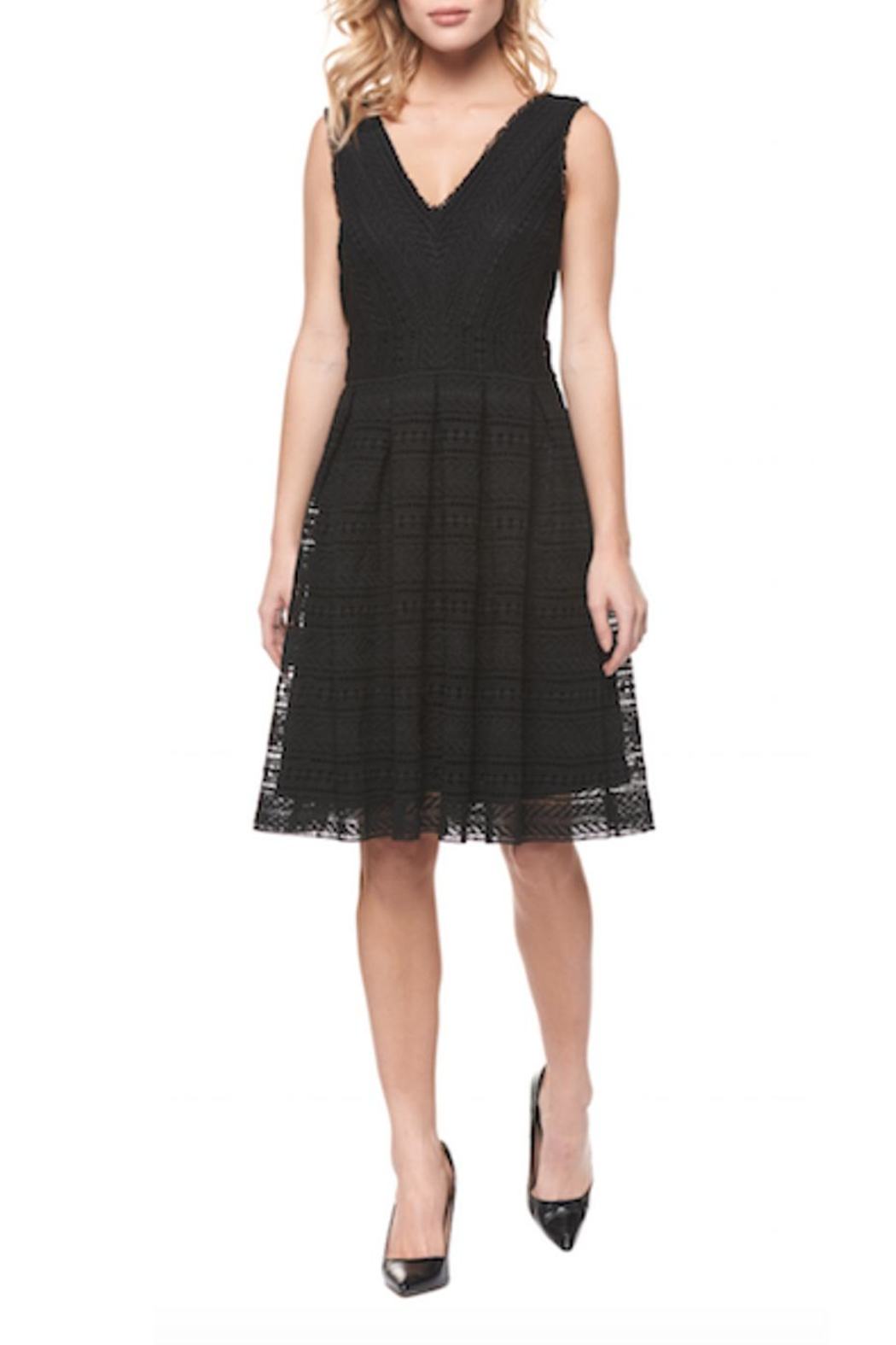 Dex Fit & Flare Dress - Main Image