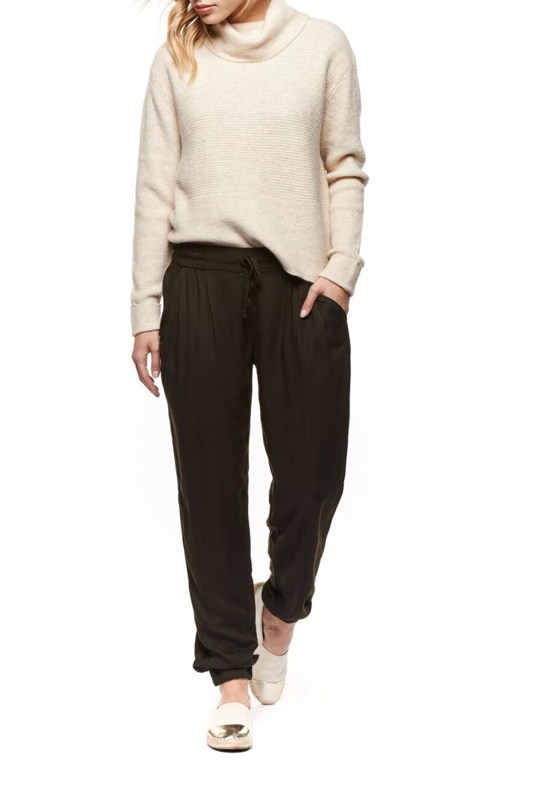 Dex Heathered Turtleneck Sweater - Front Cropped Image