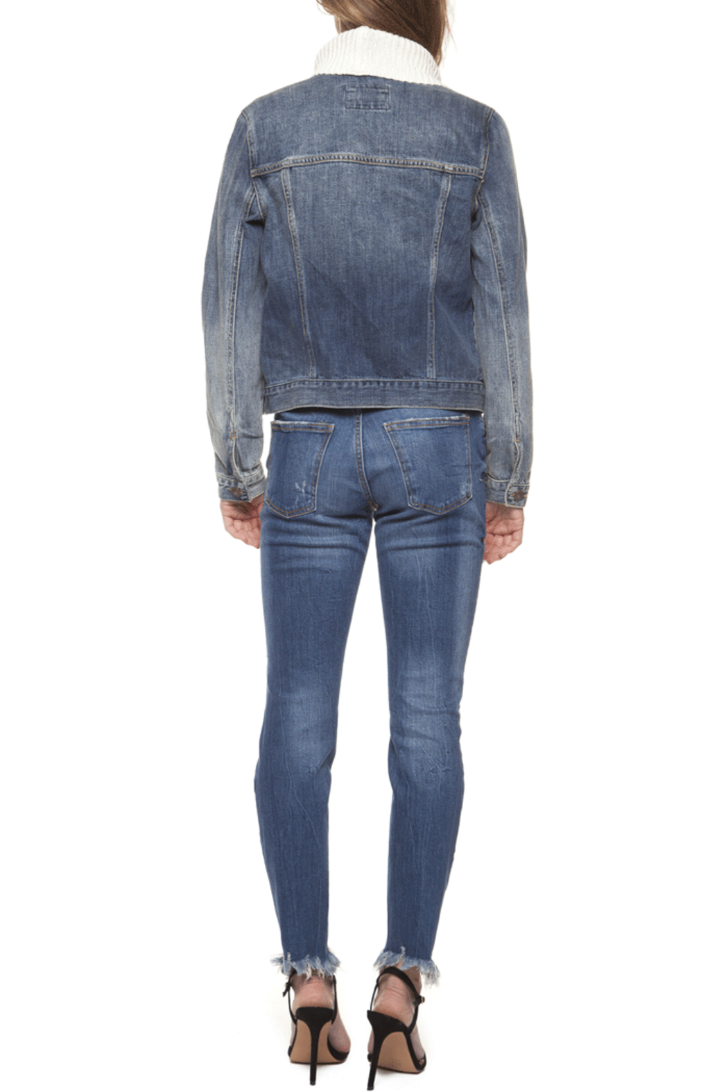 Dex Jacket with Sweater Collar - Back Cropped Image
