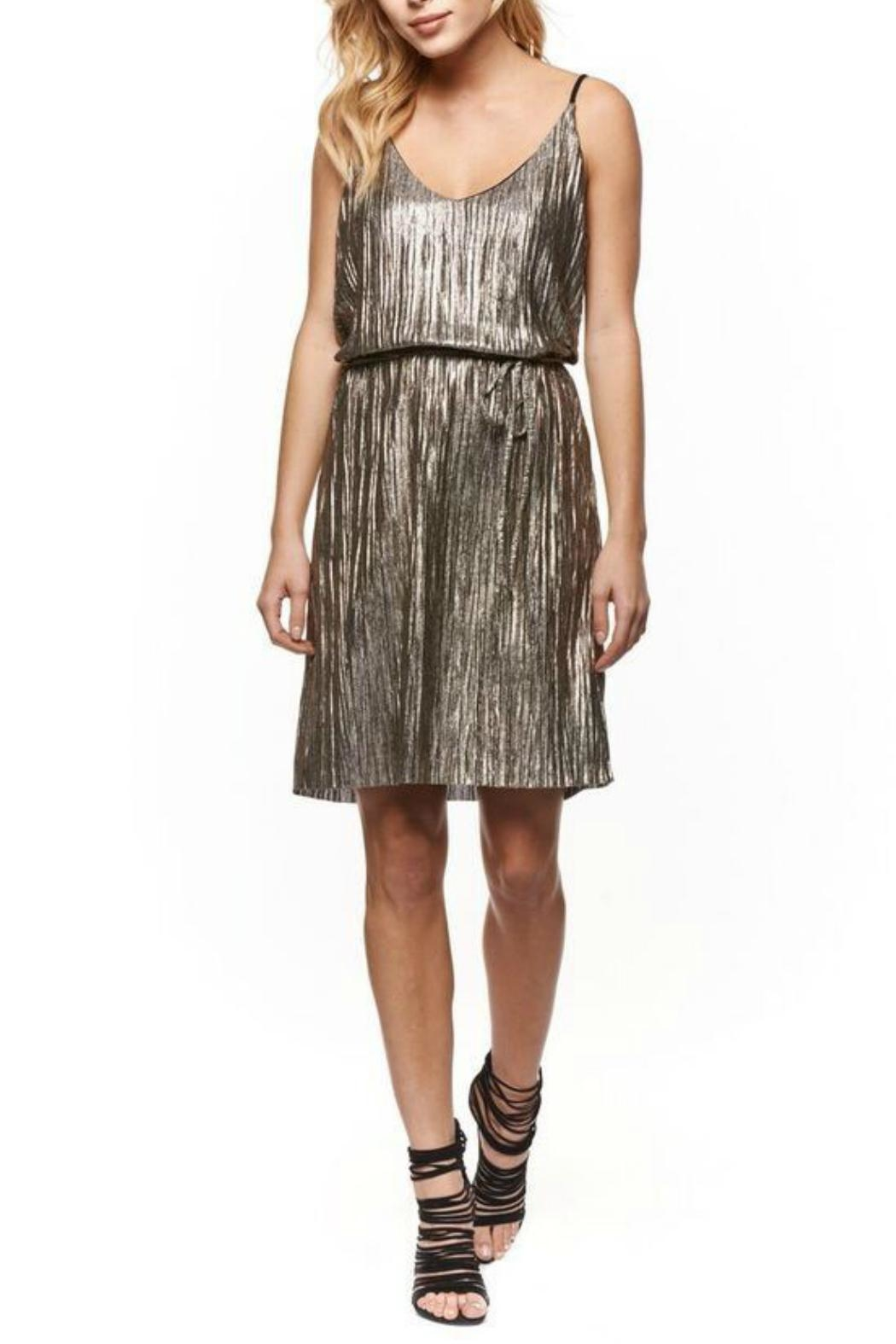 Dex Metallic Pleated Dress - Front Cropped Image