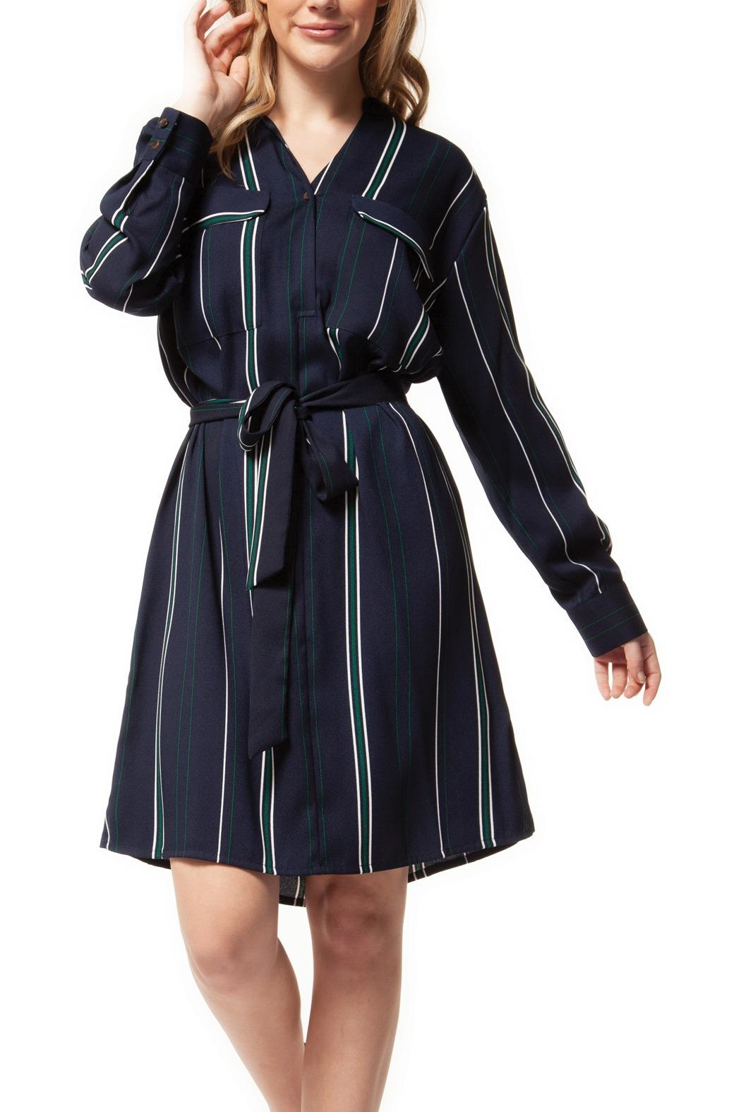 Dex Preppy Stripe Dress - Main Image