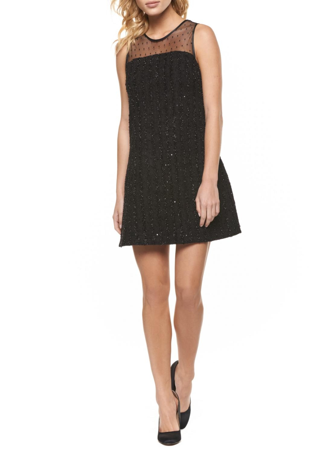 Dex Sequin Mesh Dress - Front Cropped Image