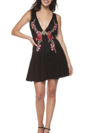 Dex Sleeveless Embroidered Dress - Product Mini Image