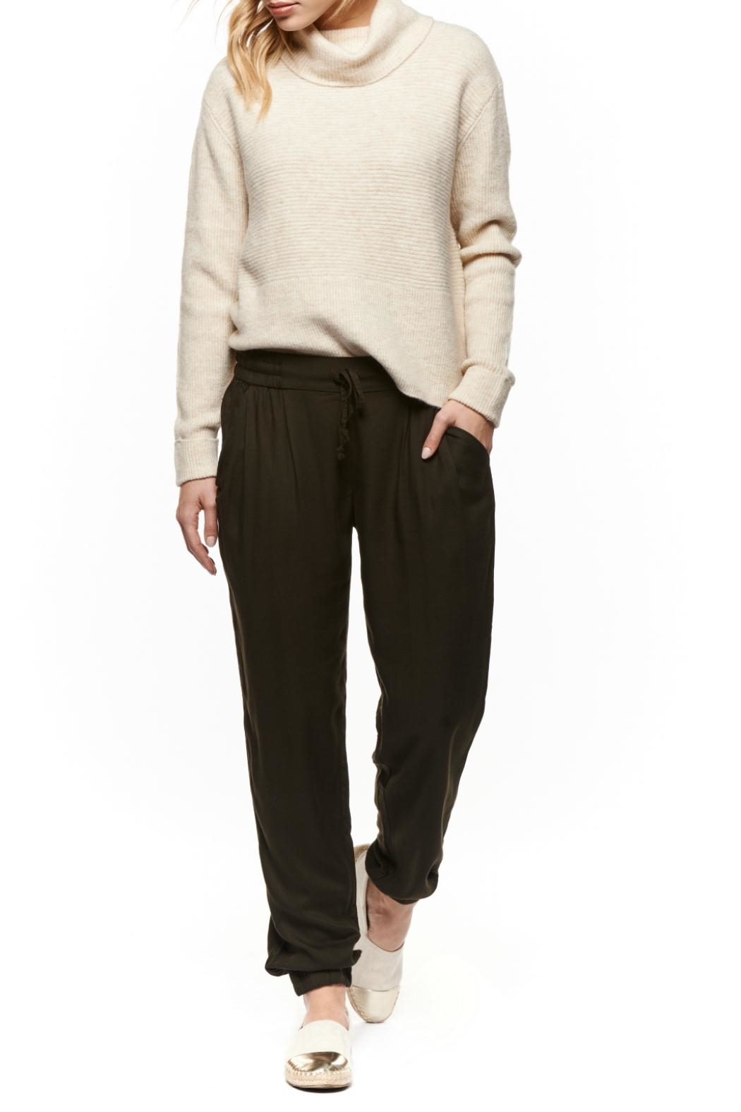 Dex Turtleneck Rib Sweater - Front Cropped Image
