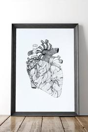 Dime & Regal Heart Anatomy Print - Front cropped