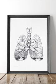 Dime & Regal Lungs Anatomy Print - Product Mini Image