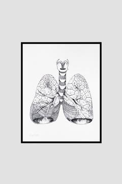 Shoptiques Product: Lungs Anatomy Print